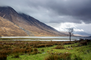 Remote mountains and lake below overcast sky, Loch Etive, Argyll Scotlandの写真素材 [FYI02697541]