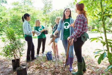 Environmentalist volunteers planting new treeの写真素材 [FYI02697583]