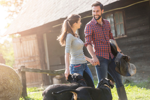 Couple with saddle and dogs holding hands outside rural barnの写真素材 [FYI02697716]