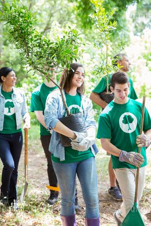 Smiling environmentalist volunteers planting new treeの写真素材 [FYI02698555]