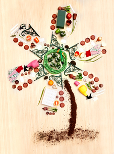 Still life concept gardening supplies forming windmill treeの写真素材 [FYI02698731]