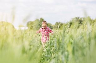 Carefree boy running in sunny rural fieldの写真素材 [FYI02699016]