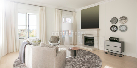 Home showcase living room with marble fireplaceの写真素材 [FYI02699196]