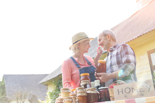 Affectionate senior couple selling honey at farmer's marketの写真素材 [FYI02699247]