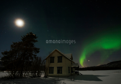 Idyllic view of aurora borealis over house by tree at nightの写真素材 [FYI02699416]