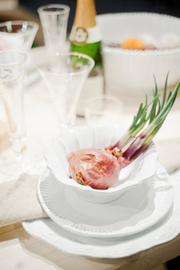 Sweden, Vastra Gotaland, Goteborg, Close-up of onion in bowlの写真素材 [FYI02699589]