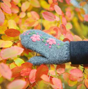 Finland, Ostra Nyland, Lapptrask, Hand in glove touching leaの写真素材 [FYI02699913]
