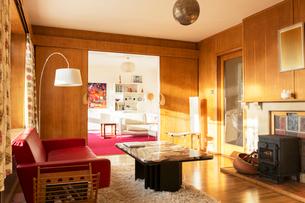 Sunny wood paneled living roomの写真素材 [FYI02700180]
