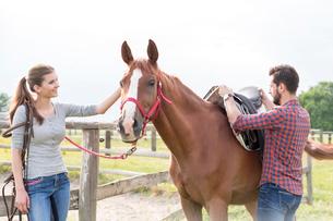 Couple saddling horse in rural pastureの写真素材 [FYI02700352]