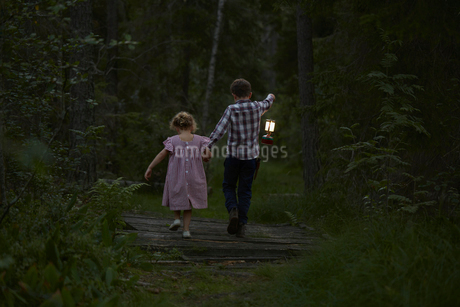 Brother and sister walking with lantern over footbridge in woodsの写真素材 [FYI02700498]
