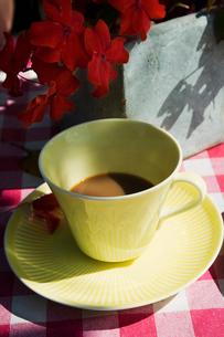 Sweden, Cup of coffeeの写真素材 [FYI02700640]