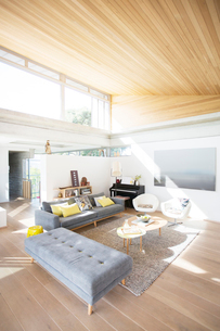 Modern home showcase living roomの写真素材 [FYI02701171]