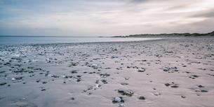 Rocks on tranquil gray beach, Vigsoe, Denmarkの写真素材 [FYI02702131]