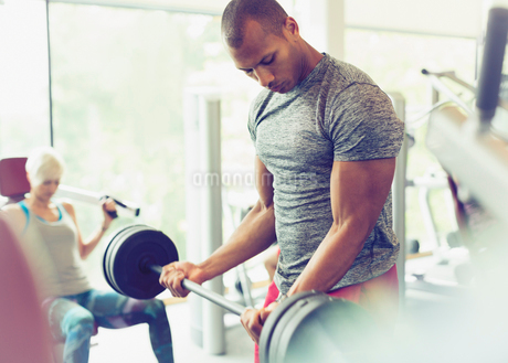Focused man doing barbell biceps curls at gymの写真素材 [FYI02702437]