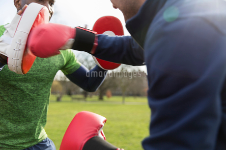 Men boxing in parkの写真素材 [FYI02702943]