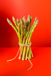 Bunch of asparagus tied with stringの写真素材 [FYI02702966]