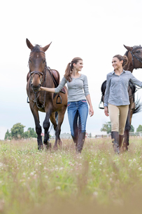 Women walking horses in rural fieldの写真素材 [FYI02703087]
