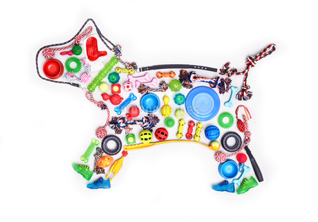 Still life concept dog toys forming dogの写真素材 [FYI02703138]