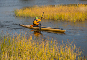 Sweden, Vasterbotten, Mature man kayaking in Baltic Seaの写真素材 [FYI02703169]