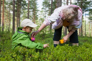 Finland, Pohjois-Savo, Tuusniemi, Grandmother with grandson (2-3) searching for blueberries in foresの写真素材 [FYI02703701]