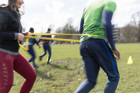 People doing team building exercise in sunny parkの写真素材 [FYI02703819]