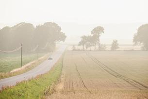 Sweden, Blekinge, Solvesborg, Country road in foggy dayの写真素材 [FYI02704129]