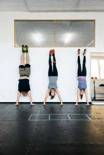 Germany, Young women and man practicing handstand in gymの写真素材 [FYI02704145]