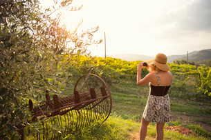 Italy, Tuscany, Dicomano, Woman taking photo of vineyard at sunsetの写真素材 [FYI02704177]
