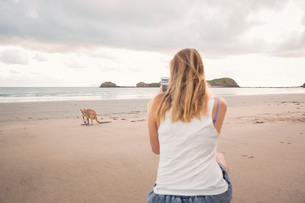 Australia, Queensland, Cape Hillsbourgh, Woman taking picture of Kangaroo (Macropus) on beachの写真素材 [FYI02704256]