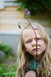 Sweden, Sodermanland, Girl (4-5) looking at flowerの写真素材 [FYI02704410]