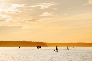 Finland, Varsinais-Suomi, Satakunda, Eura, Men competing on paddleboards at sunsetの写真素材 [FYI02704436]