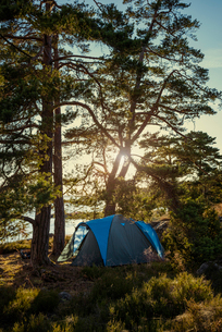 Sweden, Smaland, Tjust archipelago, Vastervik, Hasselo, Tent in forest in sunny dayの写真素材 [FYI02704481]