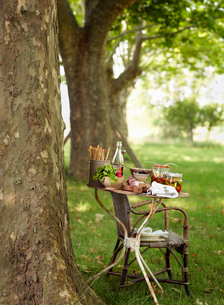 Sweden, Vastergotland, Bottle of syrup and pickled vegetables on tableの写真素材 [FYI02704524]