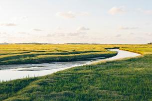 Germany, Schleswig-Holstein, Kreis Nordfriesland, Sankt Peter-Ording, Rural landscape with riverの写真素材 [FYI02704632]