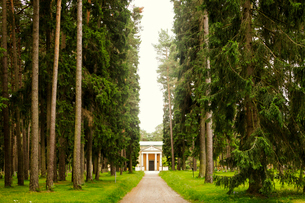 Sweden, Sodermanland, Stockholm, Gamla Enskede, Skogskyrkogarden, Treelined footpath leading to housの写真素材 [FYI02704648]
