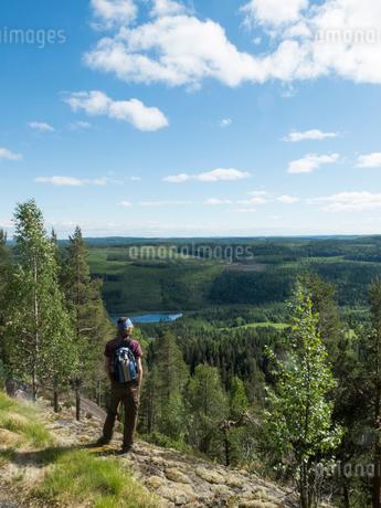 Sweden, Medelpad, Storberget naturreservat, Hiker looking at viewの写真素材 [FYI02704715]