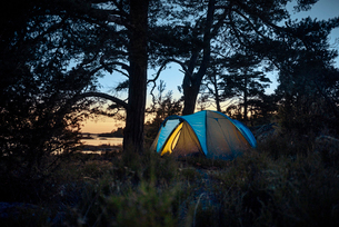 Sweden, Smaland, Tjust archipelago, Vastervik, Hasselo, Tent in forest at sunsetの写真素材 [FYI02704719]
