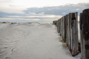 Sweden, Skane, Skanor, Wooden poles sticking out of sandの写真素材 [FYI02704744]