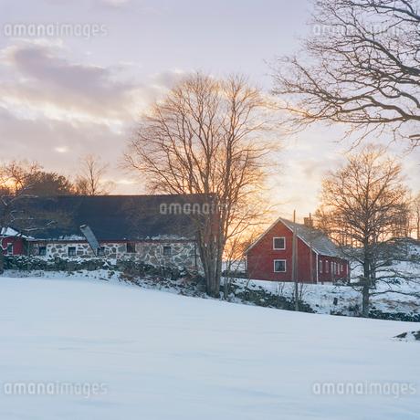 Sweden, Skane, Vanga, Picture of house in winterの写真素材 [FYI02704780]
