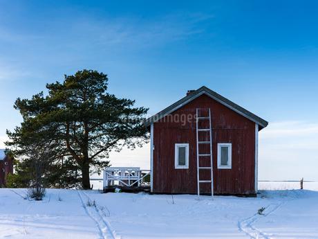 Finland, Keski-Pohjanmaa, Kokkola, Ladder leant against house in winterの写真素材 [FYI02704793]