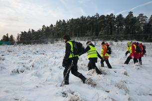 Sweden, Uppland, Upplands Vasby, Volunteers of Missing people organization walking on field coveredの写真素材 [FYI02704795]