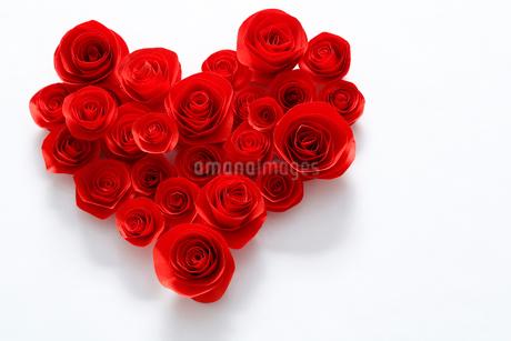 Roseの写真素材 [FYI02704868]