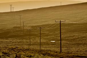 UK, Scotland, Shetland, Yell, Power lines running trough fieldの写真素材 [FYI02704879]