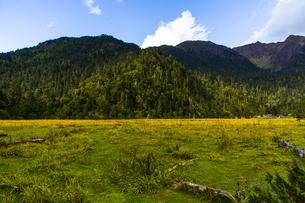 Nanyi valley in Tibet, Chinaの写真素材 [FYI02705030]