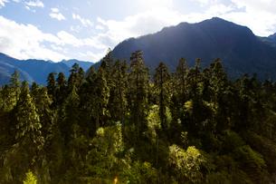 Nanyi valley in Tibet, Chinaの写真素材 [FYI02705120]