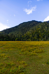 Nanyi valley in Tibet, Chinaの写真素材 [FYI02705302]