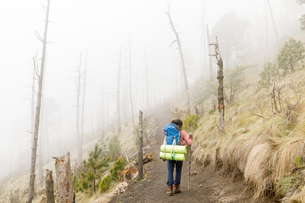 Man hiking mountain in Guatemalaの写真素材 [FYI02705326]