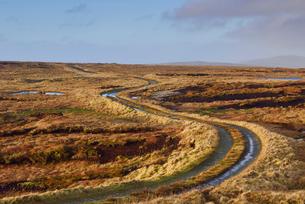 Rural road in Shetland, Scotlandの写真素材 [FYI02705384]
