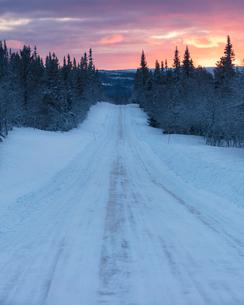 Rural road during winter in Fulufjallet National Park, Swedenの写真素材 [FYI02705424]