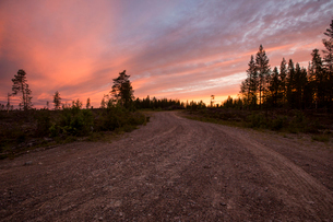 Forest road at sunset in Vasterbotten, Swedenの写真素材 [FYI02705464]